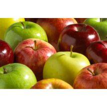 Szabadgyökerű almafa