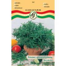 Satureja hortensis / Borsikafű