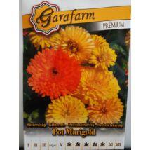 Körömvirág alacsony színkeverék Pot Marigold (prémium)