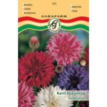 Centaurea cyanus / Kerti búzavirág színkeverék