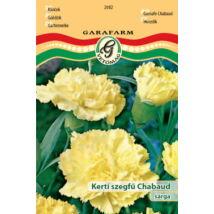 Kerti szegfű - Chabaud sárga