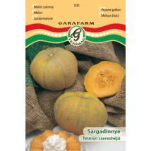 Sárgadinnye Tétényi csereshéjú (prémium)