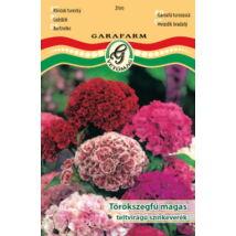 Dianthus barbatus / Törökszegfű magas színkeverék