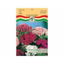 Dianthus barbatus / Törökszegfű alacsony teltvirágú színkeverék (prémium)