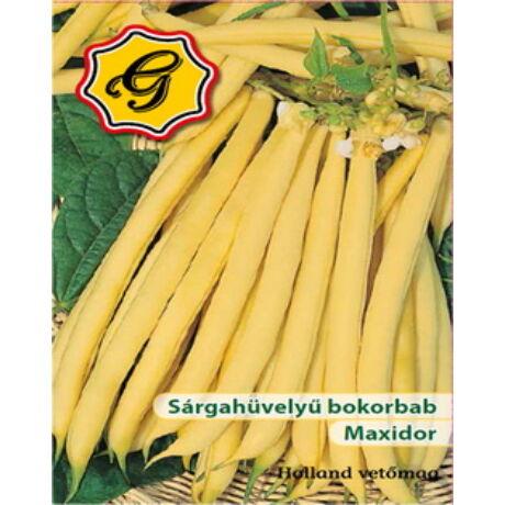 Bokorbab Maxidor (vastaghúsú, bőtermő, kiváló ízű)