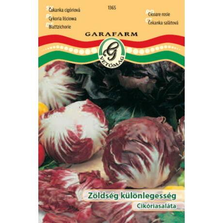 Cikória saláta - Rossa di Verona