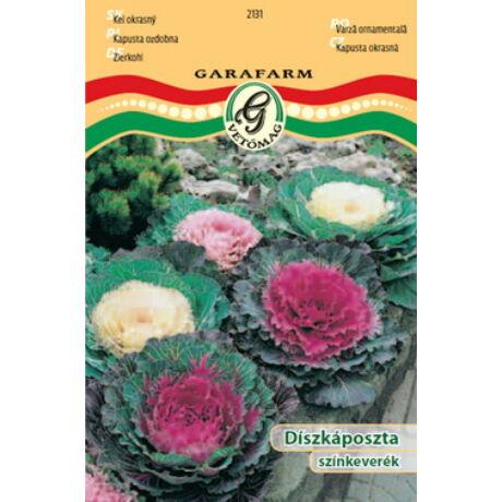 Brassica spp / Díszkáposzta színkeverék