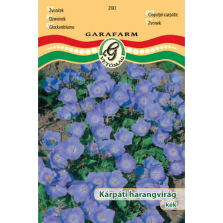 Campanula carpatica / Kárpáti harangvirág