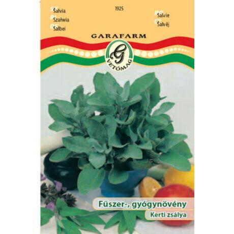 Salvia officinalis / Kerti zsálya