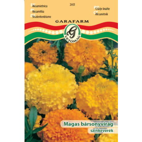 Tagetes erecta / Magas bársonyvirág színkeverék