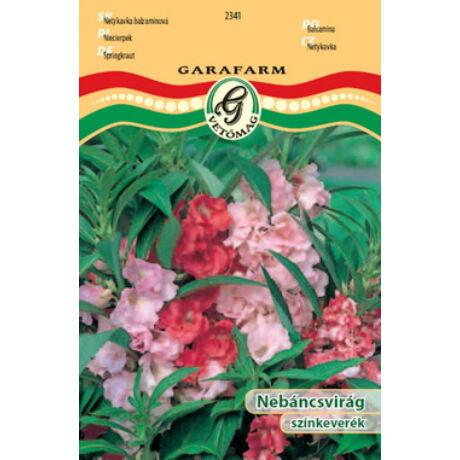 Impatiens balsamina / Nebáncsvirág színkeverék