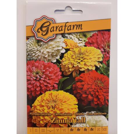Zinnia tall / Pompás rézvirág dáliavirágú színkeverék